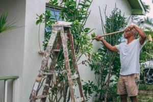 Ytterväggar fritidshus renovera